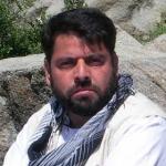احمد زکی  موسی